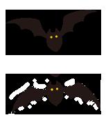 大きいコウモリ